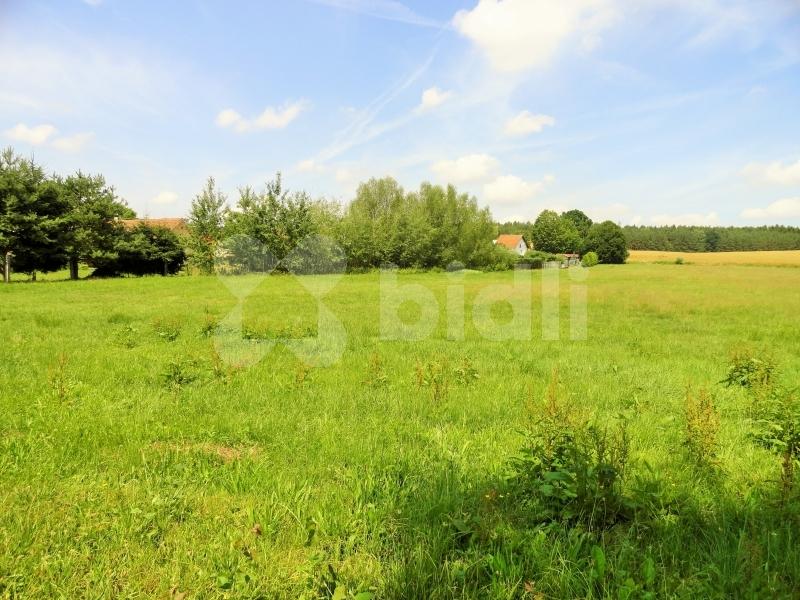 Prodej  pozemku o výměře 5 456 m2 na okraji obce