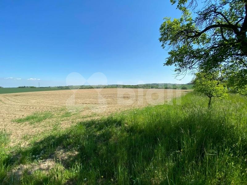 Prodej pozemku 3552 m2 Kopřivnice Lubina